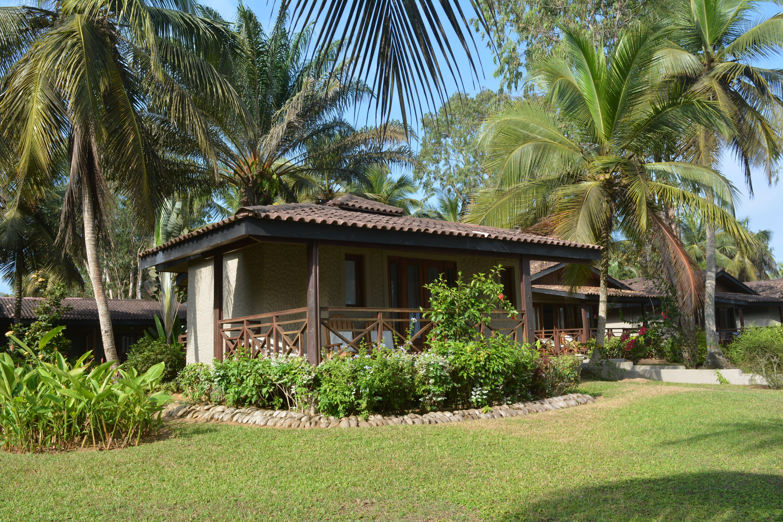 Coucou Lodge, Assini