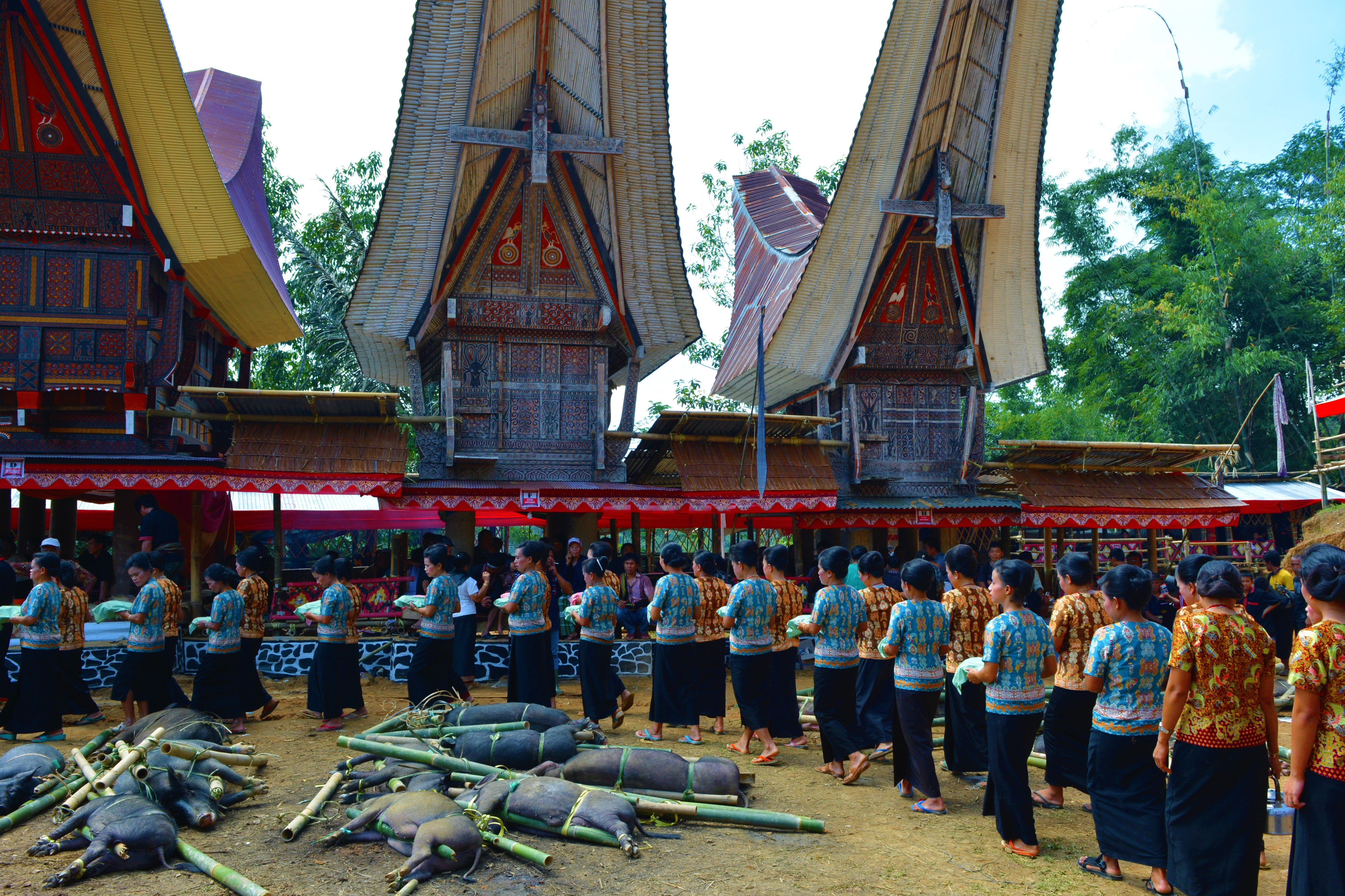 tana-procession