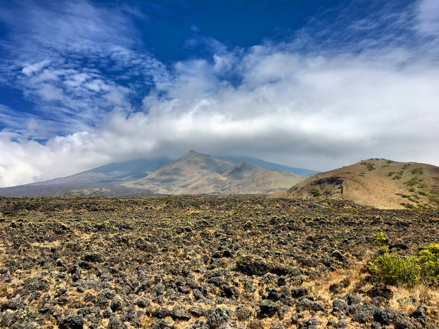 Climbing Mount Cameroon – Day Two
