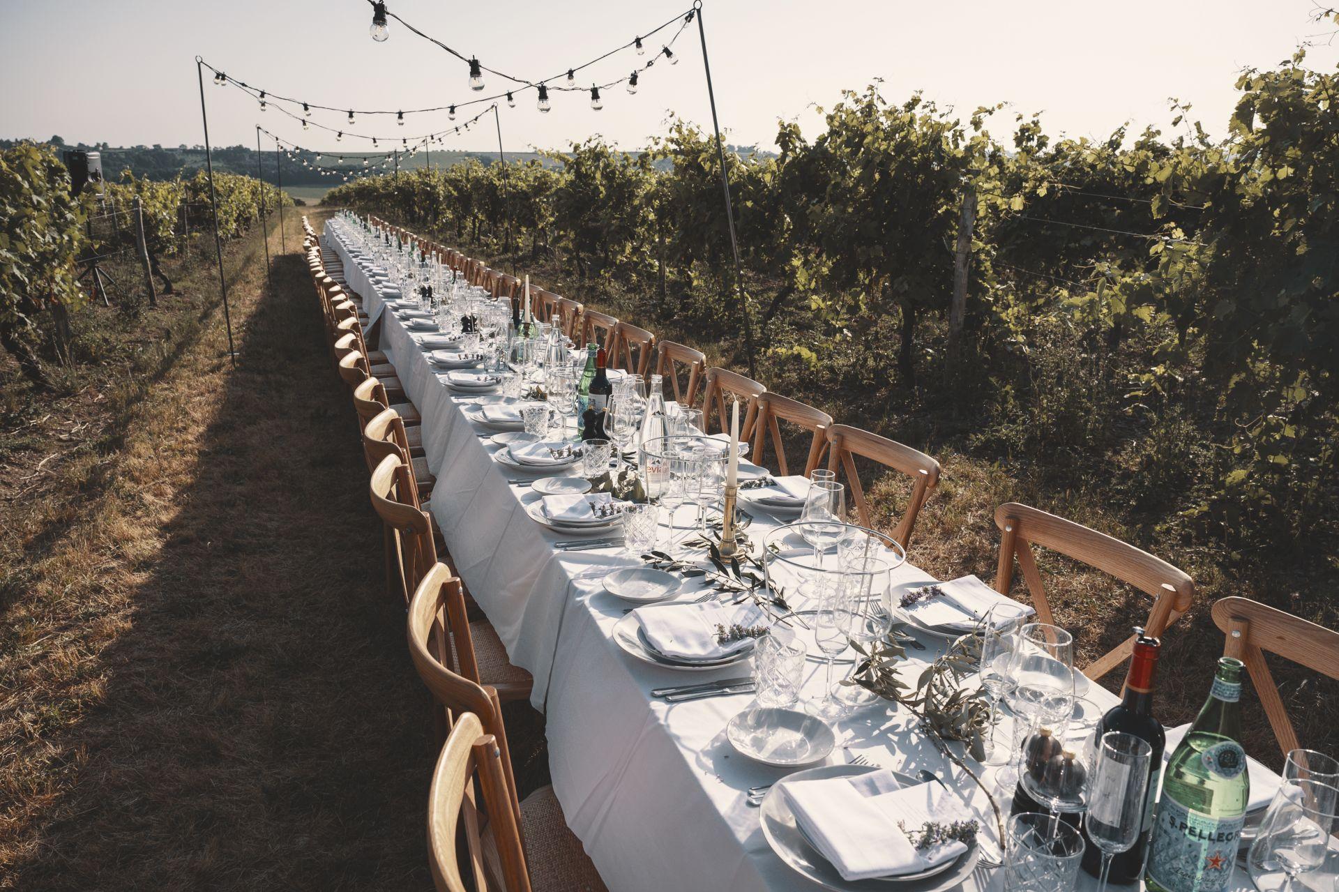 La Vue France - Wedding Breakfast- Table in Vineyard - StuJarvis.com