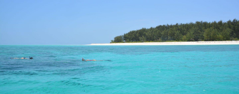 Mnemba-Island-Zanzibar-Snorkelling-Stu-Jarvis